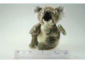 plyšová koala 16cm