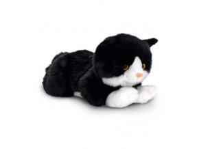 biela mačička čierne vtáky