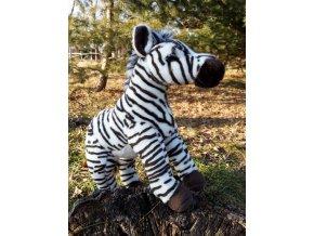 Plyšová zebra
