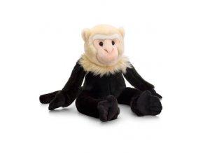 opica kapucinska