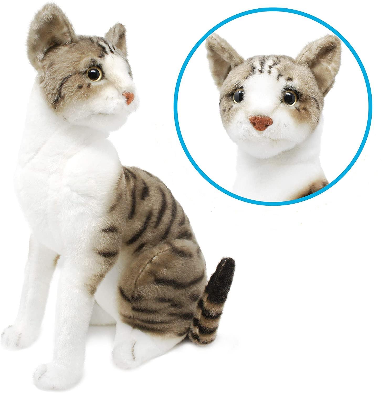 Mačka plyšová Druh mačky: Siamská