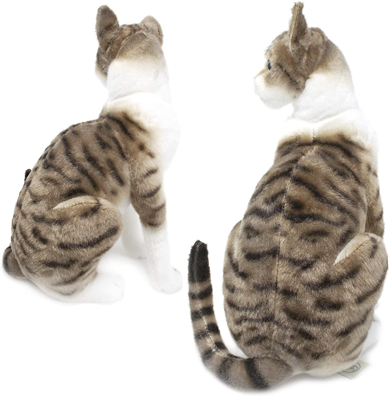 Mačka plyšová Druh mačky: Bengalská
