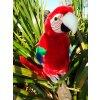 38(2) plysovy papagaj 28cm