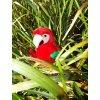 38(3) plysovy papagaj 28cm