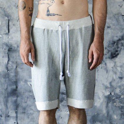 basic shorts1