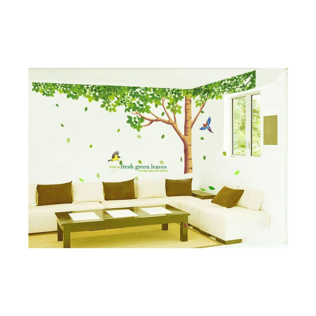 Samolepka na stenu Zelený listnatý strom