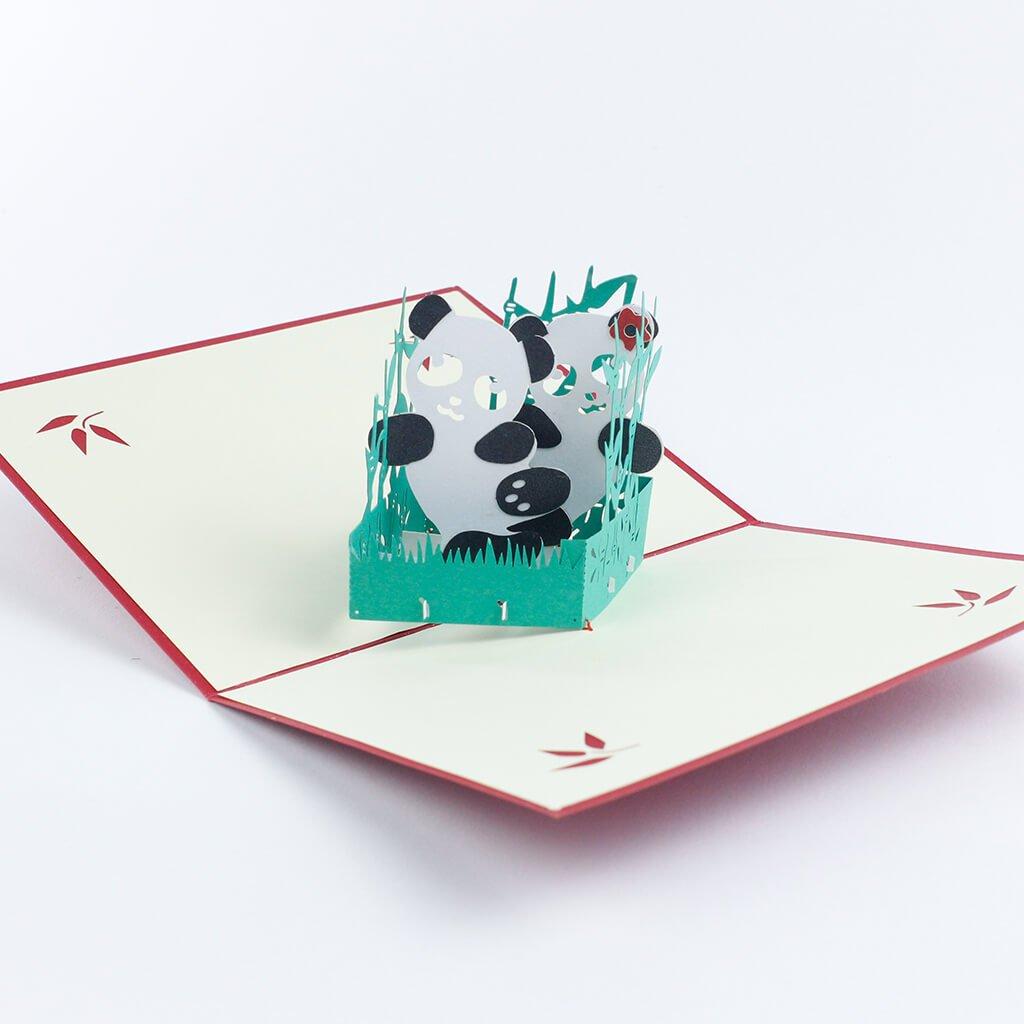 3D prianie Pandy
