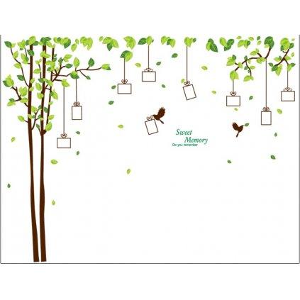 Samolepka na stenu Darčekový strom spomienok