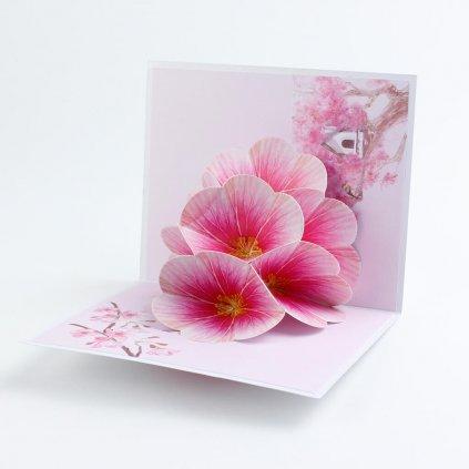 3D prianie Ružový kvet