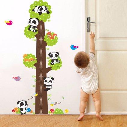 Samolepka na stenu meter Pandy