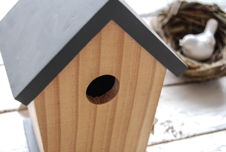 Ptačí budky a krmítka pro ptáky - jak je vybrat a kam umístit