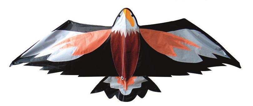Létací draci