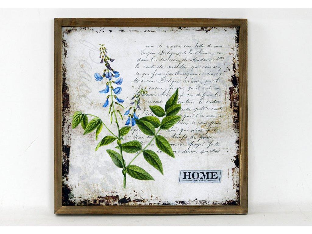 Obraz plátěný   dřevěný rámeček   bylina a  text