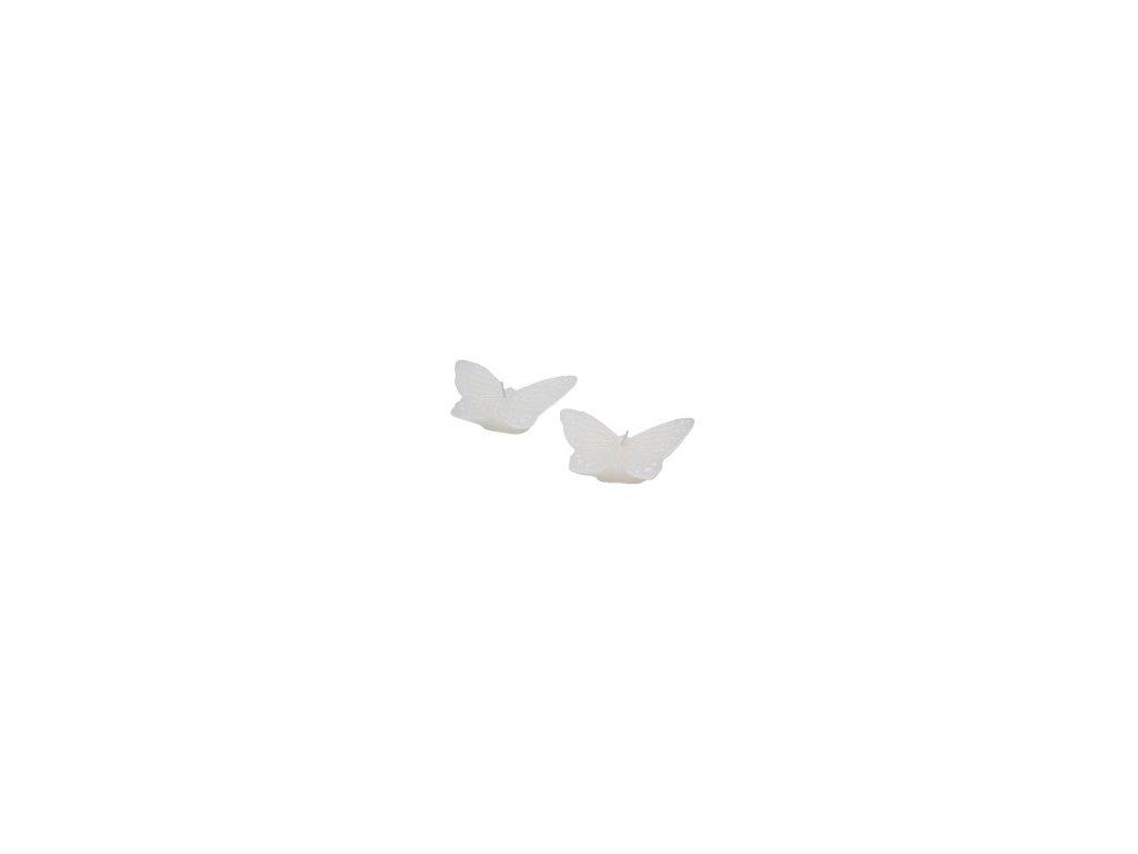 Svíčka   motýl   malý box 2ks   9x6x2,5cm