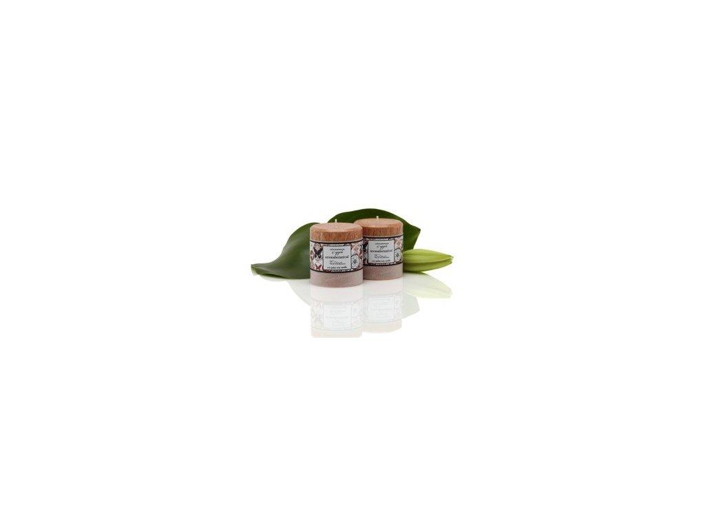 Vonná svíčka z palmového vosku | skořice a jablko | 7,5x6,5cm