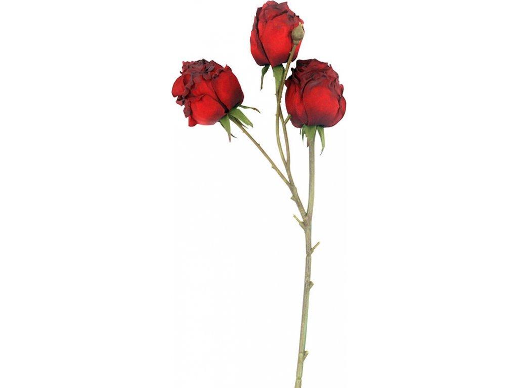 Vzhled suché růže, barva červená. Květina umělá.