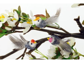 Ptáček na přilepení | sada 6ks
