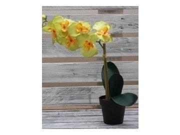 127167 1 umela kvetina orchidej zluta