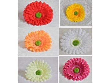 Květy Gerbera | varianty