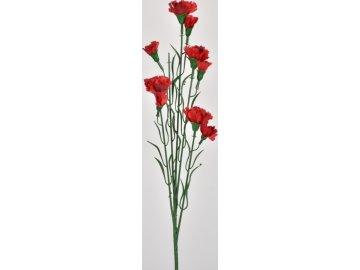 Karafiát trs | červený | 58 cm