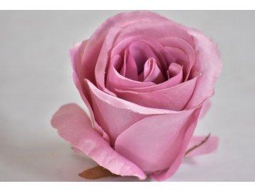 Květ saténové růže pudrová