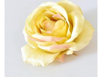 Květ saténové růže krémově zelené