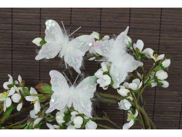 Motýl s klipem  sada 12 ks  bílá barva