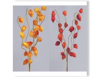 physalis vetev 60cm mix zluta oranz W812180 2 3
