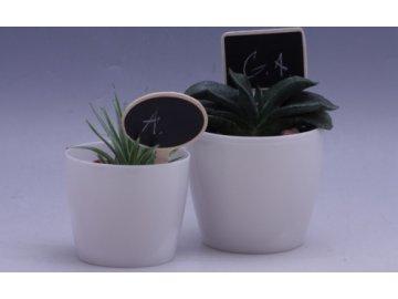 Cedulky na bylinky s kolíčkem