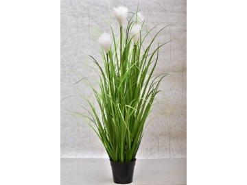 Dekorativní tráva v květináči 115 cm