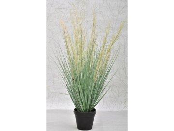 Dekorativní tráva v květináči 78 cm
