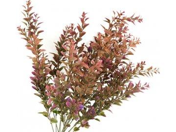 Buxus, umělá květina