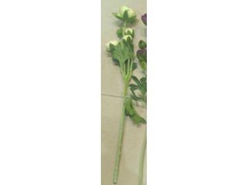 Ranunkulus 5 hlav, umělá květina, barva zelená