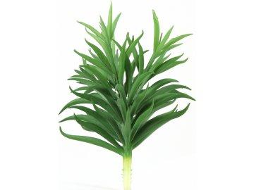 Pteridopsida umělá květina