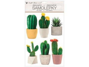 Samolepka 3D kaktusy