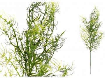 Asparagus, barva zelená. Květina umělá plastová