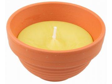 Zahradní svíčka | citronela