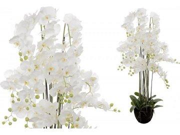 Velkokvětá orchidea, 13 stonků, barva bílá, umělá květina v balu.