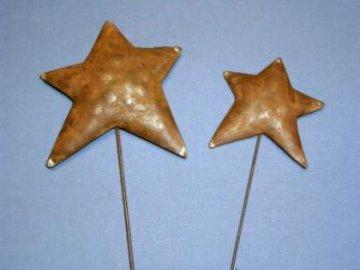 Hvězda zápich kov