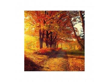 Ubrousky Podzimní park