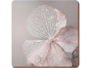 Korkové prostírání Skeleton Flower