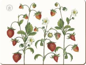 Korkové prostírání Strawberry Fayre