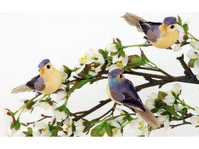 Ptáček s klipem | sada 3ks | 13cm