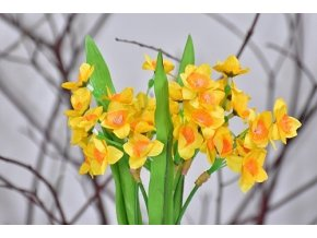 narcis | puget