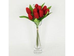 Puget tulipánů | 9 květů