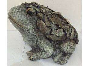 Žába | MgO keramika |  design dřeva