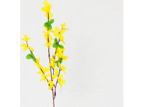 Zlatý déšť | dekorace | 50x9cm