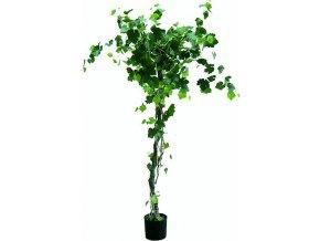 Vinná réva Europalms Vinná réva s hrozny, 180 cm