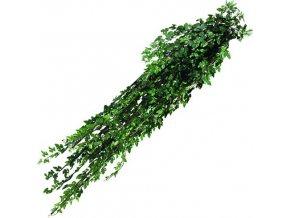 Šlahoun vinná réva Europalms délka 160 cm