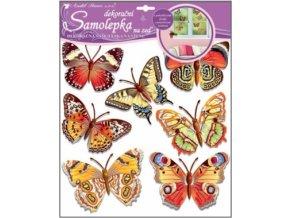 Samolepky na zeď skuteční motýli 38x31cm